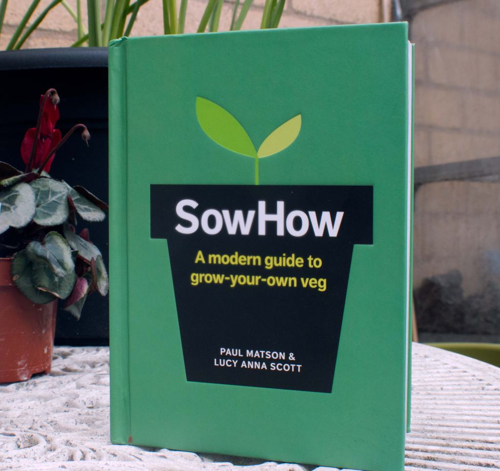 sow how, grow your own food, food, foodies, bristol, urban garden, beginner gardener, how to grow food, how to, guide, getting started, growing, gardening, fruit, vegetables, veg, allotment, plot, modern, veg patch, plot, green, seeds, sowing, plants, lifestyle, living, urban, land, farming, horticulture, interview, podcast, gardening podcast